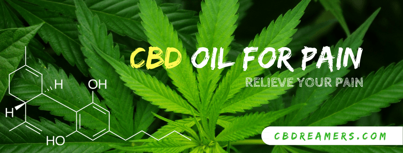 Best CBD Oil For Pain Relief [Reviews 2019] - CBDreamers